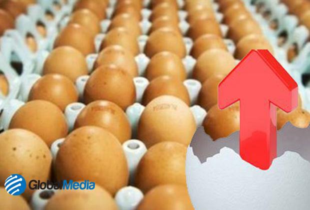 Sufrir m s variaciones el precio del huevo en este a o for Huevo en el ano