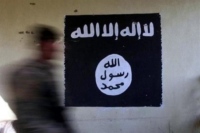 Desmantelan En Brasil Célula Del Estado Islámico